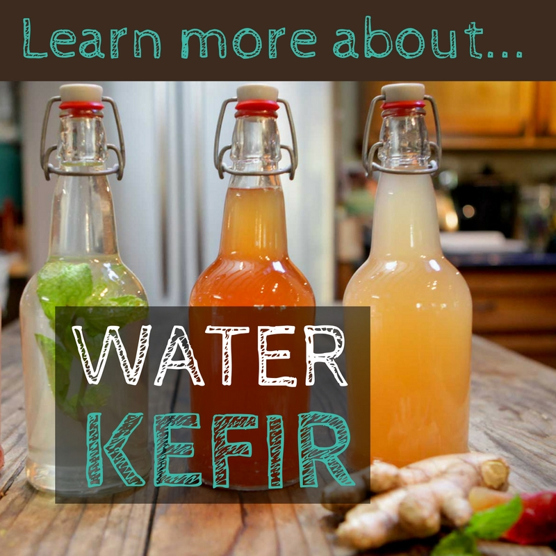 Learn more about Water Kefir