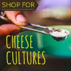 Shop for Cheese Cultures