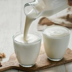 Milk Kefir Drink (500ml)