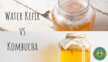 Water Kefir vs Kombucha