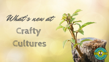 What's new at Crafty Cultures?